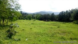 Agricultural land for Sale in Raigad | Buy Agricultural land